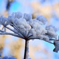 Votre guide du bien être en hiver