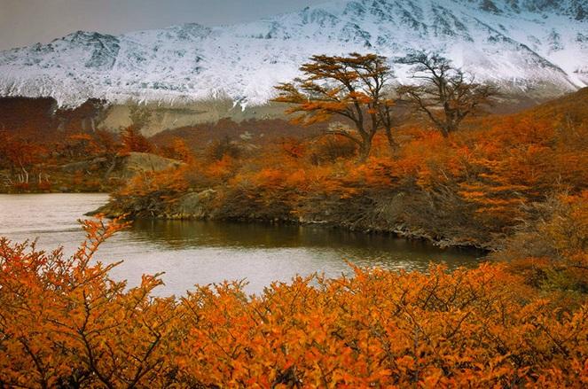 automne-a-hiver