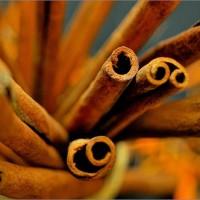 La cannelle – Boostez votre santé et vos plats grâce aux épices