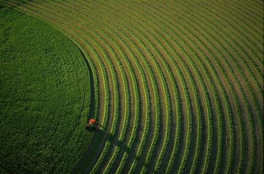 27539014agriculture-intensive-jpg